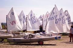 IMGP5515
